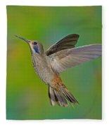Brown Violet-ear Hummingbird Fleece Blanket