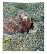 Brownstripe Octopus Burying Itself Fleece Blanket