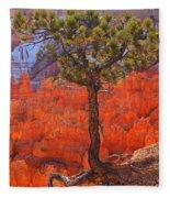 Bryce Canyon National Park Utah Fleece Blanket