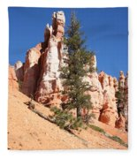 Bryce Canyon Red Fins Fleece Blanket