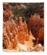 Bryce Canyon Vista Fleece Blanket