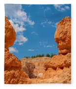Bryce Spirals 3 Fleece Blanket