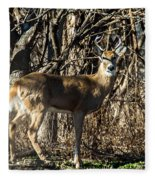 Buck In The Woods Fleece Blanket