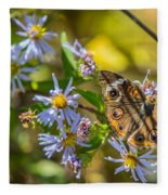 Buckeye Butterfly Fleece Blanket