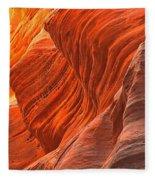 Buckskin Shades Of Red Fleece Blanket