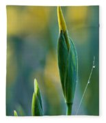 Budding Iris Fleece Blanket