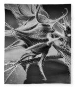 Budding Sunflower In Black And White Fleece Blanket