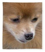 Buddy Fleece Blanket