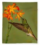 Buff-tailed Coronet Hummingbird No 1 Fleece Blanket