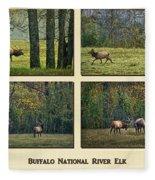Buffalo National River Elk Fleece Blanket