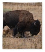 Buffalo Of Antelope Island Iv Fleece Blanket