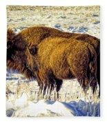 Buffalo Painting Fleece Blanket