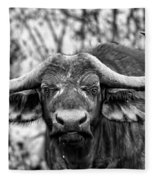 Buffalo Stare In Black And White Fleece Blanket