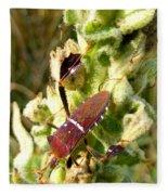 Bug On Stalk Of The Wooly Mullein Fleece Blanket