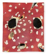 Bugaboo - Amanita Muscaria Fleece Blanket