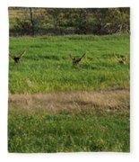 Bull Elk At Dean Creek Fleece Blanket