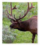 Bull Elk In Yellowstone Fleece Blanket