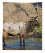 Bull Elk On The Madison River Fleece Blanket