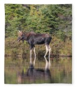 Bull Moose 3 Fleece Blanket