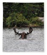 Bull Moose - 3502 Fleece Blanket