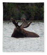 Bull Moose - 3587 Fleece Blanket