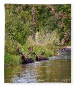 Bull Moose Summertime Spa Fleece Blanket