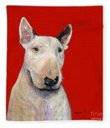 Bull Terrier On Red Fleece Blanket