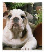 Bulldog Puppy With Flowerpots Fleece Blanket