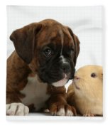 Bulldog Puppy With Yellow Guinea Pig Fleece Blanket