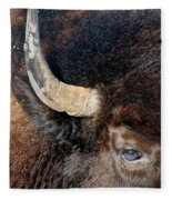 Bull's Eye Fleece Blanket