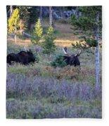 Bulls In The Meadow Fleece Blanket