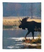 Bullwinkle Fleece Blanket