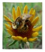 Bumble Bee Beauty Fleece Blanket