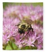 Bumble Bee On A Century Plant Fleece Blanket