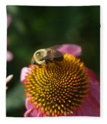 bumblebee and Echinacea Fleece Blanket