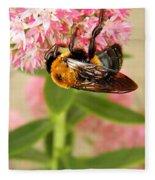 Bumblebee Clinging To Sedum Fleece Blanket