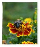 Bumblebee On Marigold Fleece Blanket