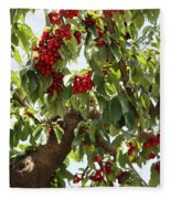 Bumper Crop - Cherries Fleece Blanket