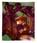 Burgundy Blossom Fleece Blanket