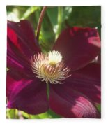 Burgundy Clematis Profile   # Fleece Blanket