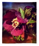 Burgundy Hellebore Flower Fleece Blanket