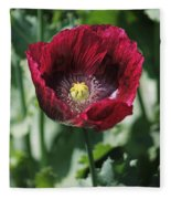 Burgundy Poppy Fleece Blanket