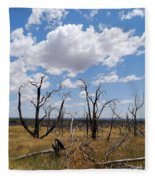 Burned Trees On Colorado Plateau Fleece Blanket