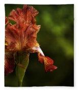 Burnt Orange Iris Fleece Blanket