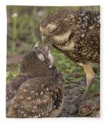 Burrowing Owl Feeding It's Chick Photo Fleece Blanket