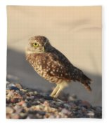 Burrowing Owl II Fleece Blanket