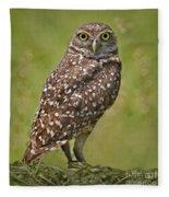 Burrowing Owl Fleece Blanket