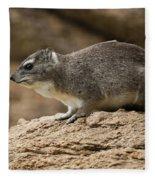 Bush Hyrax 2 Fleece Blanket