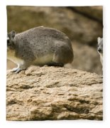 Bush Hyrax  Fleece Blanket