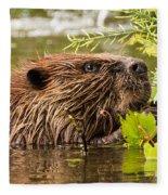 Busy As A Beaver Fleece Blanket